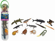 CollectA - Box Of 12 Mini Animals - Prehistoric Marine