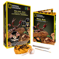National Geographic - Real Bug Dig Kit