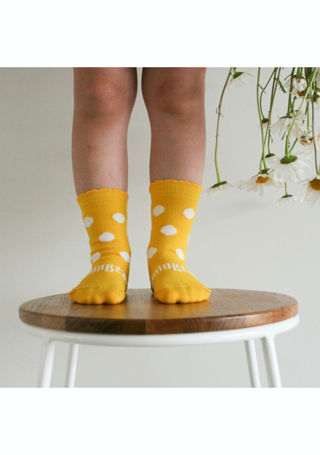 Lamington - Merino Wool Crew Socks - Dalphne