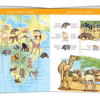 Djeco - Observation Puzzle - Animal 100pc