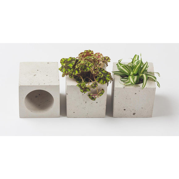 Cube Concrete Planter