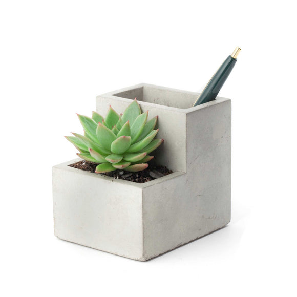 Small designer concrete desktop planter, perfect combination of room for some stationery as well as some cute succulents.