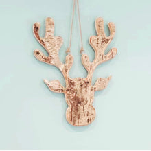 Gorgeous Birch Moose / Stag Head 30cm (3 left, selling fast) - The Perfect Gift Co.