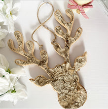 Gorgeous Birch Moose / Stag Head 30cm (3 left, selling fast)