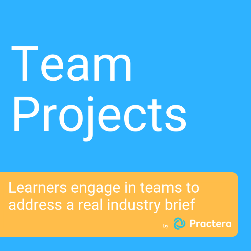 Team-based Projects