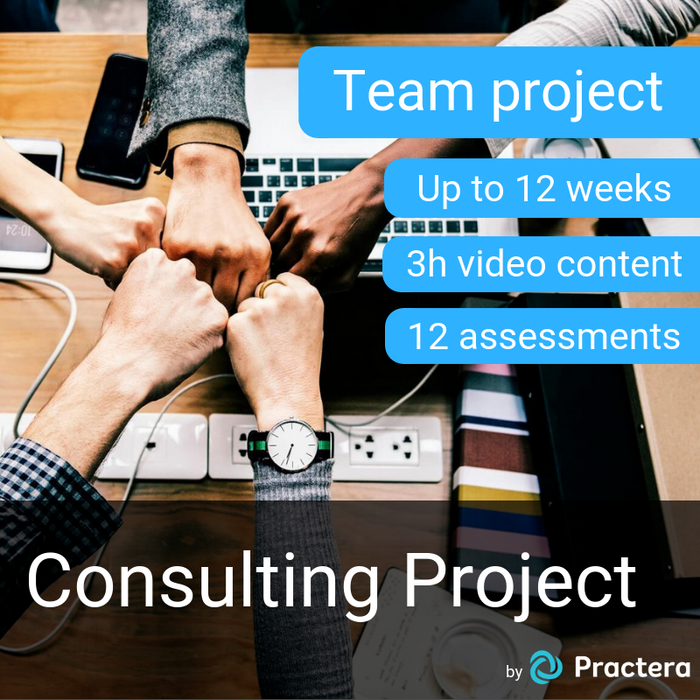 Consulting Project (Up to 12 weeks, 3h video content, 12 assessments)