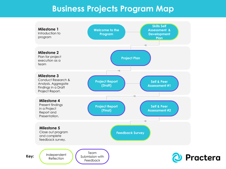 Business Projects Program - Generic (12 Feedback Loops)
