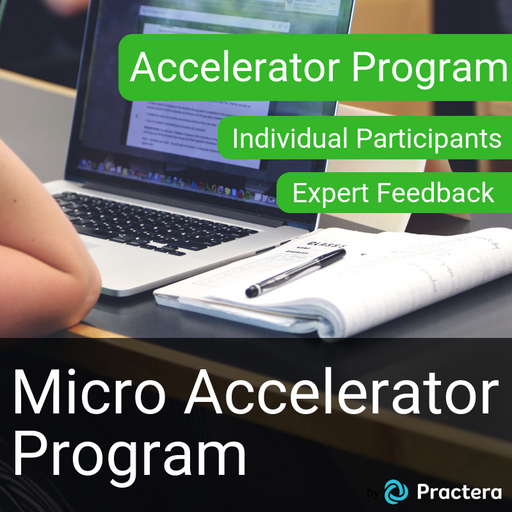Accelerator Program (Micro, Individual, Collaboration Zone) - with FEEDBACK service