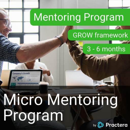 Micro Mentoring Program - GROW Framework (3-6 Months)