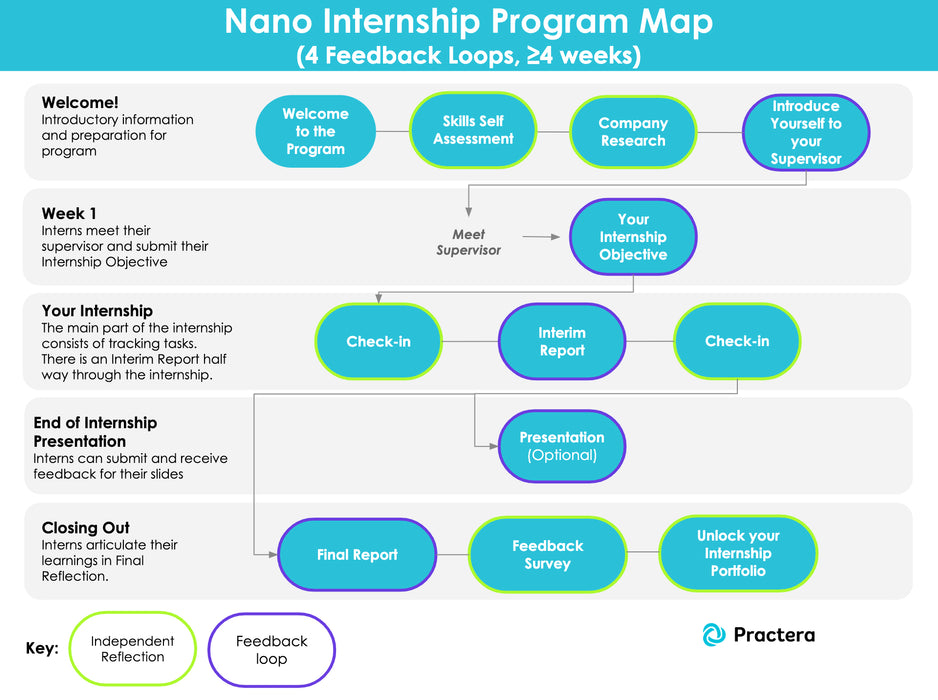 Nano Internship / Industry Placement (6 weeks)