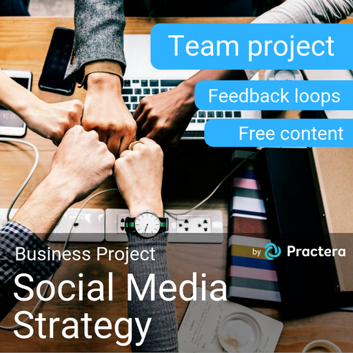 Social Media Strategy Project