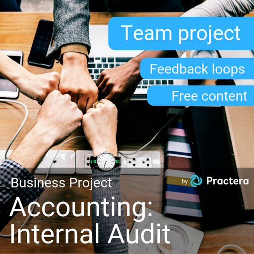 Accounting: Internal Audit Project