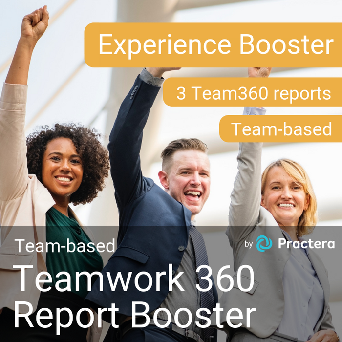Teamwork360 Report
