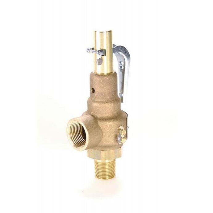 APOLLO VALVES 19 Series ASME Safety Valve