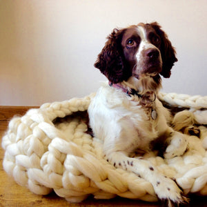 Knitted Dog Bed