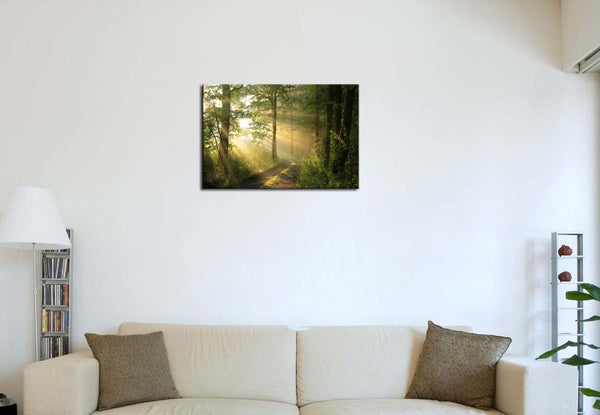 Wall Art Forest Modern Canvas Painting The Picture for Home Decoration Green Trees Foggy Morning Spring Landscape Print On Canvas Giclee Artwork for Wall Dec