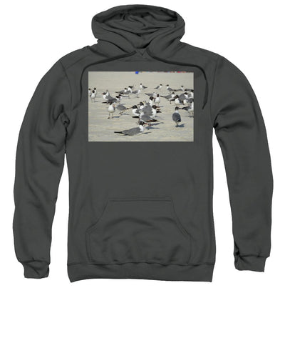 Seagulls at the Beach - Sweatshirt