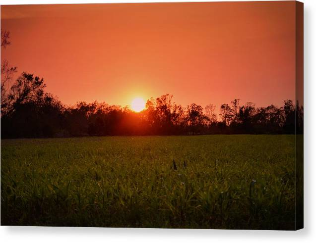 Sunset in Alabama - Canvas Print