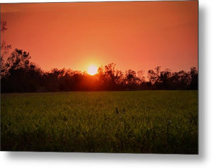 Sunset in Alabama - Metal Print