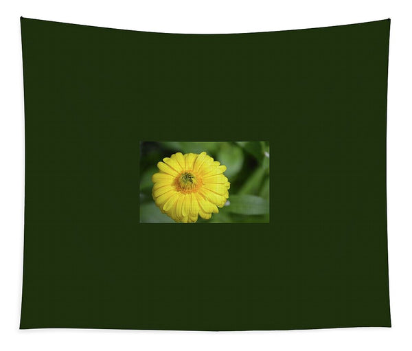 Yellow Dandelion - Tapestry