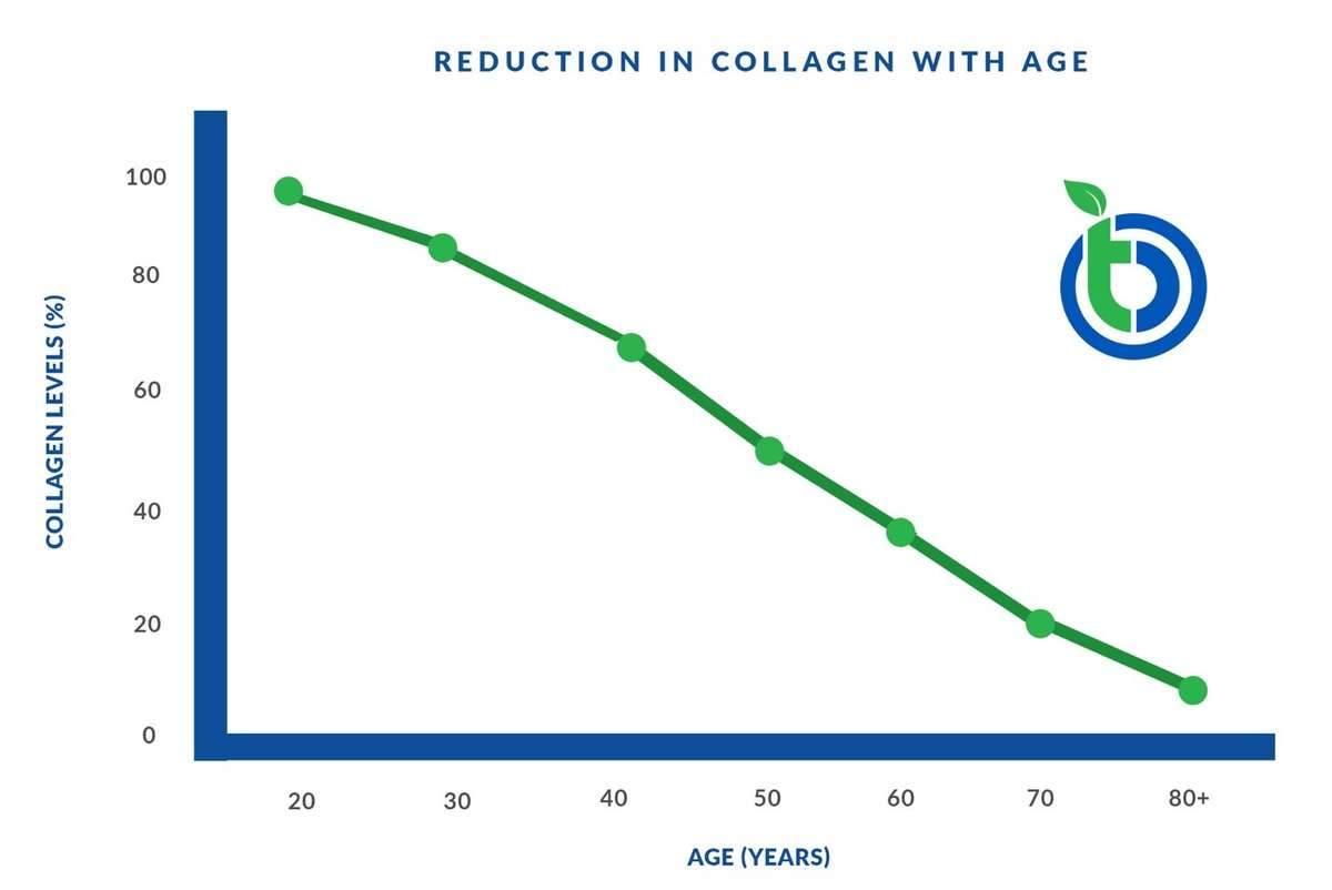 Reduction in Collagen with Age