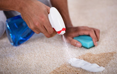 Image of hands cleaning a tan rug with a sponge and blue spray.
