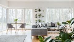 White living room and dining room, simple design, large windows, a few plants.