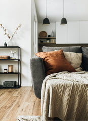 Part of a sofa with a blanket draped over it, behind it is a simple shelf