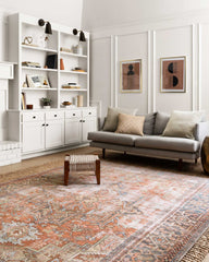 loloi terracotta sky rug in well appointed living room with white bookshelves and grey sofa.