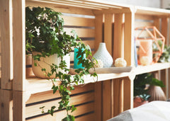 Wooden crate shelves with plants and other decorative items.