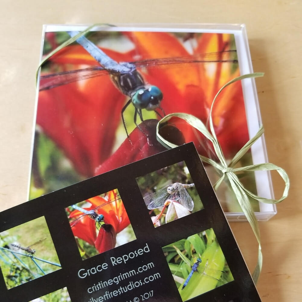 "A box of greeting cards with a green raffia ribbon. Main image is of a blue dragonfly with teal eyes and black wings perched on a dark orange/red flower bud with a large orange day lily in the background. A partial sample card reads ""Grace Reposed"" and has sample images of multiple cards in the set."