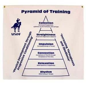 Training Pyramid Banner