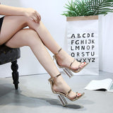 Open Toe Straps Ankle Wrap Zipper Transparent Chunky Heels Sandals