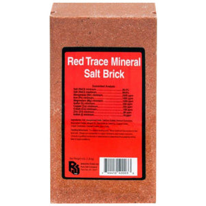 Roto 4 lb Salt Bricks