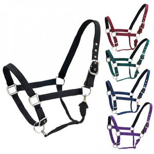 Centaur® Solid Cushion Padded Breakaway Halter