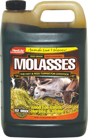 Herdlife Molasses