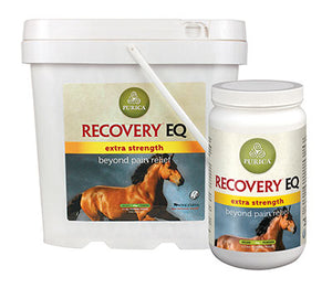 Recovery EQ Extra Strength (with HA)