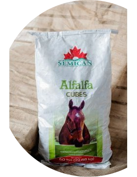 Semican International Alfalfa Cubes