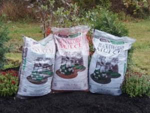 Lowe Brown Mulch 2CF