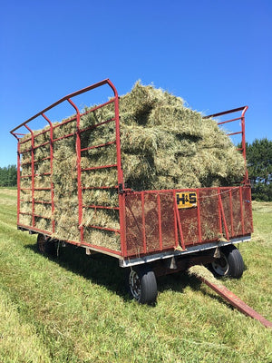 Mixed Grass Hay