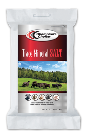 Champion's Choice® Trace Mineral Salt