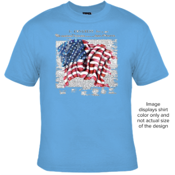 Declaration of Indendpence T shirt