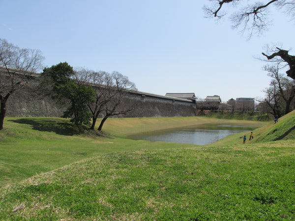 Park around Kumamoto Castle - clean as a whistle!