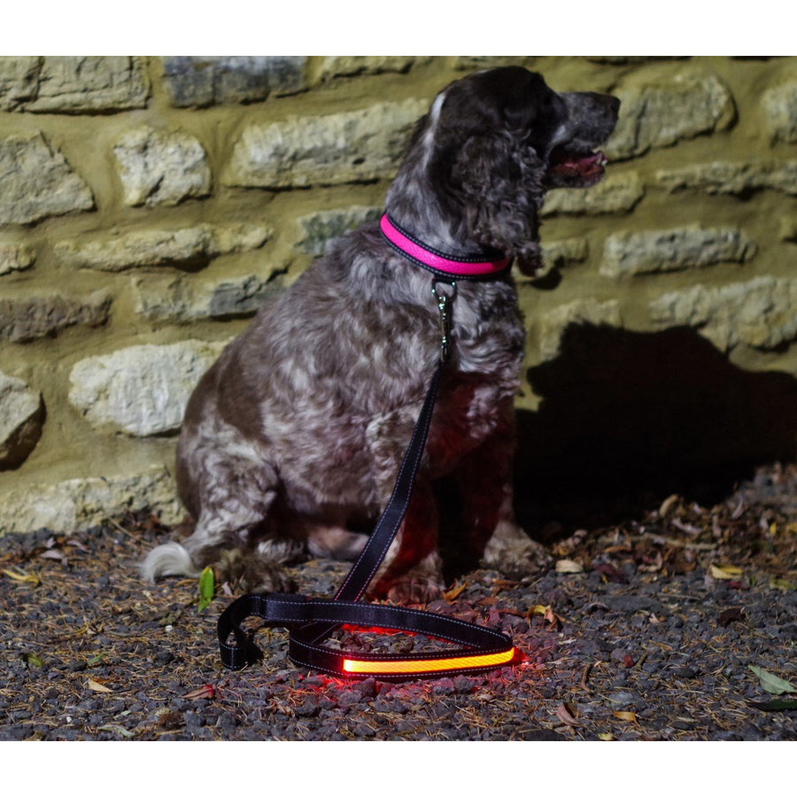 Pink LED Light up Dog Lead