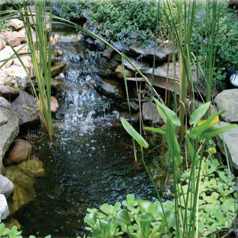 EasyPro Pro Series Medium Pond Kit 21' x 26' [EM2126FB] in a Beautiful Pond