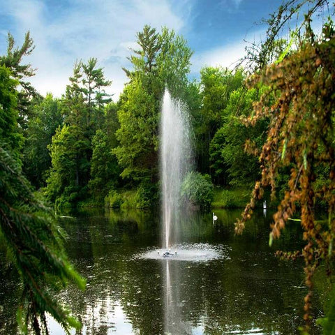 Scott Aerator Gusher Pond Fountain 1/2HP Shooting Very High Water with Tall Trees Everywhere