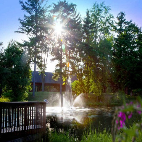 Scott Aerator Skyward Pond Fountain 1/2HP With Flower and Sunrise Background