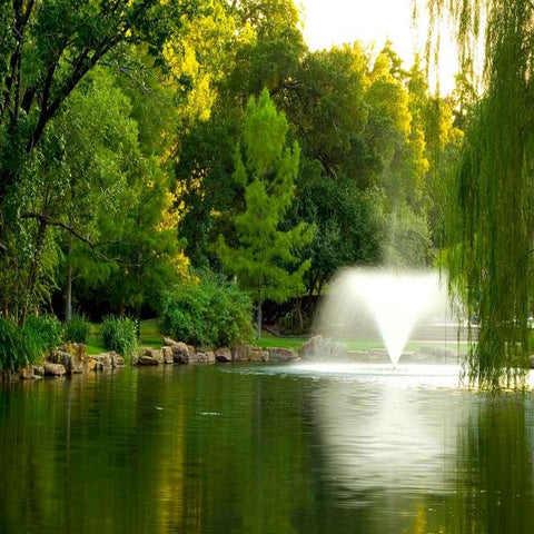 Image of the Scott Aerator DA-20 Display Fountain Aerator 3HP in a Pond with Trees Everywhere