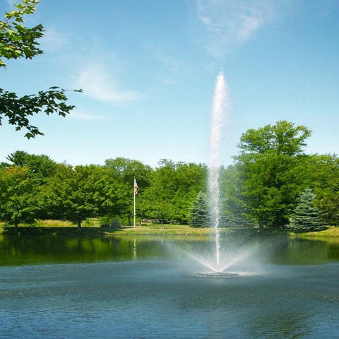 Scott Aerator Skyward Pond Fountain 1.5HP 230V place in a Pond with Different Kind of Trees