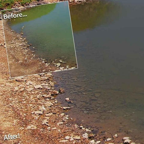 Pond Logic PondClear Water Treatment - 96 Packets with Before and After Images